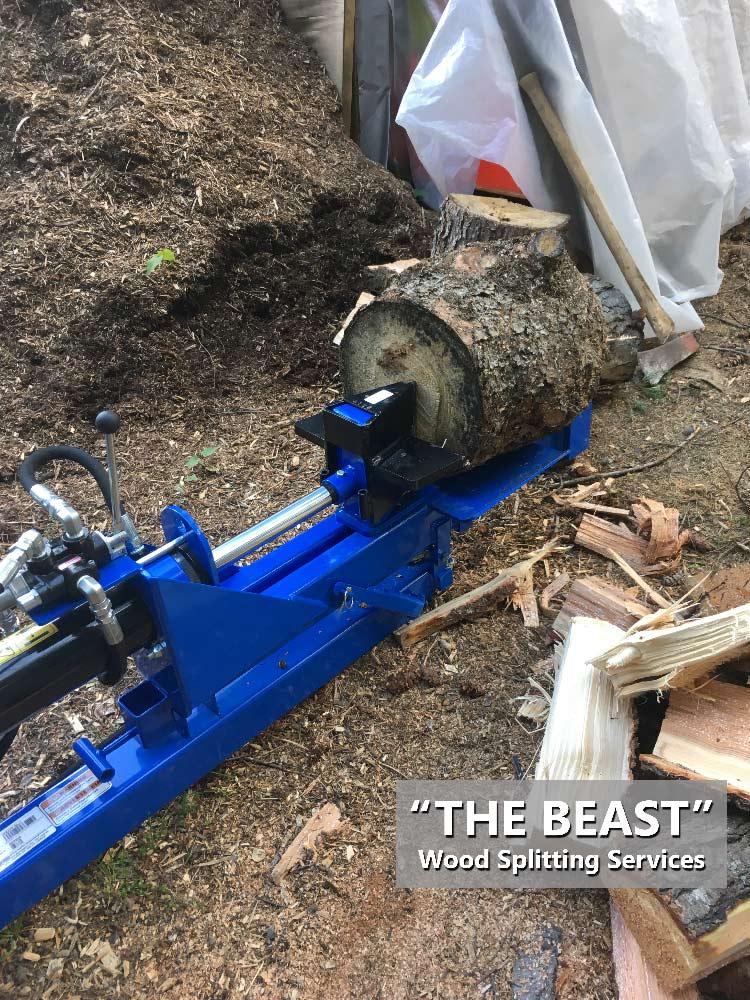 Wee Chip Cowichan The Beast wood splitter logs splitting Services