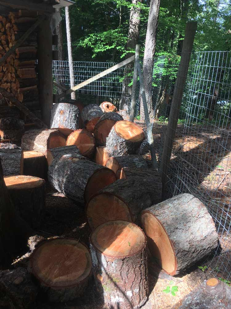 Wee Chip Cowichan Wood Splitting Services